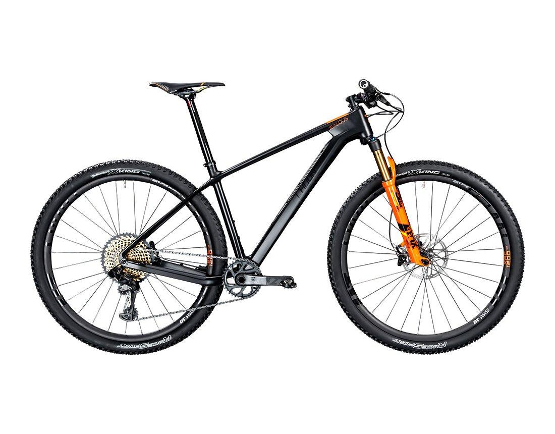 Bicicleta Radon Jealous 10.0 SL